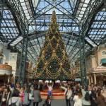 【TDL】2017 ディズニーランド「クリスマス・ファンタジー」に行ってきました。